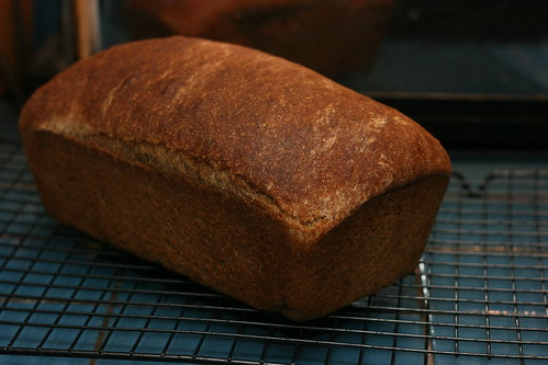 Whole Wheat Sourdough Loaf