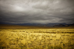 Little Road on the Prairie (kotobuki711) Tags: autumn storm mountains fall grass rain yellow fog clouds colorado gray foggy september co prairie fairplay canon50d lostparkroad