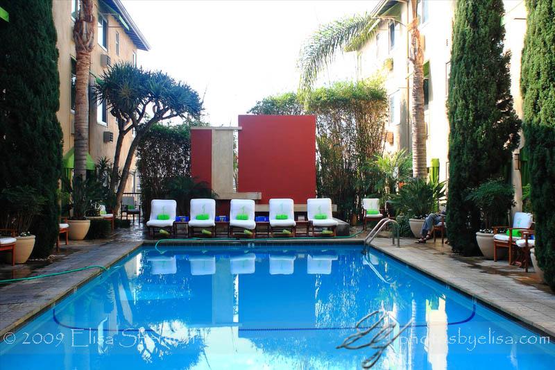Pool at the Grafton Hotel by Elisa Sherman   photosbyelisa.com