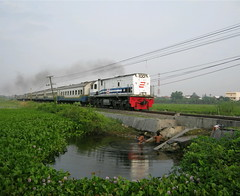 Bocah mandi di rawa (Semut Ireng) Tags: bridge lake water train river indonesia nokia railway jakarta mandi surabaya rawa bisnis babat gumarang