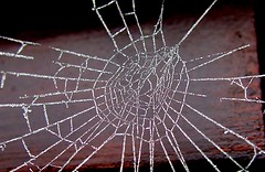 chaotic frosted web (rabinal) Tags: spider frost chaos web cobweb chaotic
