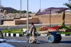 Egypt_Land_und_People_2008_056 (pepebraulio) Tags: egypt afrika nil luxor abusimbel komombo edfu assuan nubie theben nubien gypten