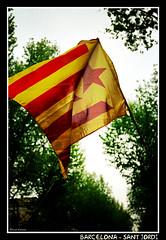 Barcelona - Sant Jordi (CATDvd) Tags: barcelona abril social catalonia april2005 april catalunya estel santjordi nikonf65 catdvd estel·lada davidcomas