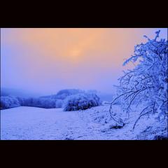 Celebrating winter (dellafels) Tags: themoulinrouge dellafelspic mywinners multimegashot qualitypixels vosplusbellesphotos