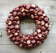 Chestnuts Wreath (Kastanjeskrans) (Made by BeaG) Tags: original brown nature circle creativity design artist belgium designer handmade unique oneofakind ooak kunst belgi wreath creation chestnuts round kastanjes krans unica walldecor unicum couronne tabledecoration doordecoration tabledecor beag walldecoration doordecor doorgift kunstenares uniquedesign ontwerpster recycledecor originaldesigner creativedesigner chestnutswreath natureinpired naturedcraft designedandmadebybeag uniekontwerp ontworpenengemaaktdoorbeag handgemaaktekrans gedecoreerdekrans kransmaken fireplacedecoration recyclehomedecor designerwreath designerwreaths