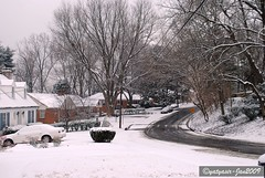 2009 Winter 013 - Our neighborhood