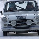 Cortina in Action thumbnail