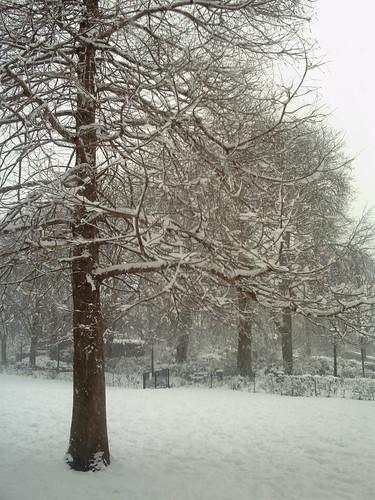 A bit more snow...