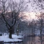 Dawn After A Snowfall thumbnail