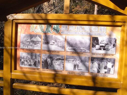 你拍攝的 14武陵農場歷史回顧。