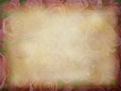 bed of roses- free texture