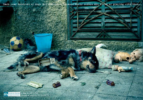 Fundación Altarriba - A Dog is Not a Toy