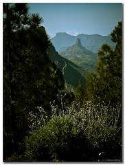 Roque Bentayga (Carmen Cabrera (tSfruit)) Tags: blue trees sky paisajes mountain verde green grancanaria rock azul landscapes arboles olympus explore cielo roque e300 montaa canaryislands zuiko islascanarias roquebentayga zd 1445mm