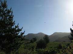 Montara Mountain in the morning Photo