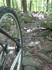 Salisbury Trails - Bethlehem, PA
