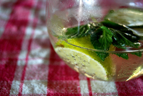 Tonic Water, Lime, Mint, Gingham