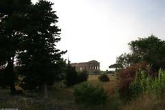 IT07 4345 Temple of Neptune, Paestum (Templar1307) Tags: italy italia europe eu travel 2007 paestum campania salerno capaccio poseidonia пестум greek temples unescoworldheritagesite unesco templeofhera hera column classical ancient ruins temple templeofneptune apollo neptune