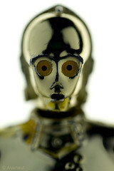C-3PO Protocol Droid Portrait (Avanaut) Tags: portrait detail macro eye face metal closeup toy toys actionfigure gold star golden robot miniature starwars bright figure wars 60mm droid c3po hasbro seethreepio macrotoys protocoldroid humancyborgrelations