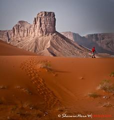 The Journey to the Arabian Desert (` bluechip) Tags: bravo desert redsand riyadh saudiarabia bluechip tokina2880mmf28 nikond300 sherwinnora wadinisah