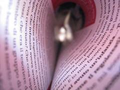 immersa nella lettura (DafneV) Tags: tunnel agosto calabria rivista ferragosto giornale