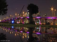 Miami's Hidden Treasures - III (iCamPix.Net) Tags: canon florida miami miamibeach professionalphotographer landsacpe i395 8429 purplebridge markiii1ds maarthercauseway