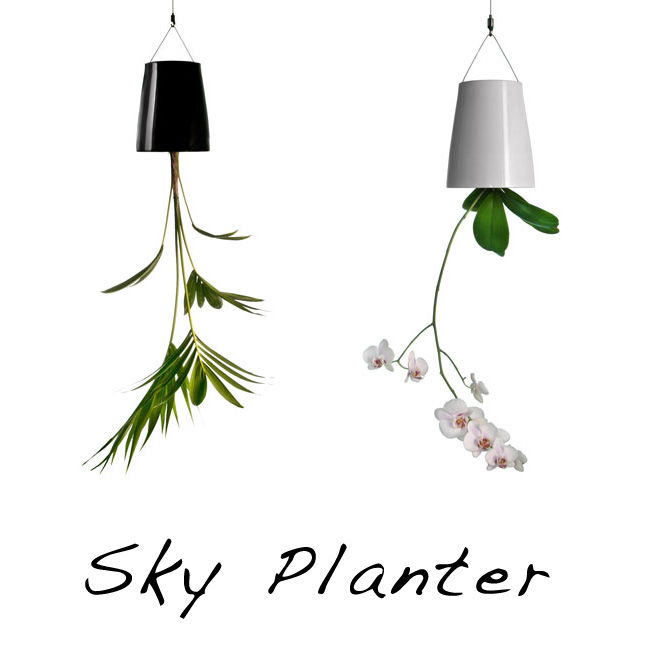 skyplanter