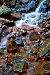 Pedra Caida - Carolina\MA (deltafrut) Tags: luz água brasil natureza carolina cerrado cachoeira cor maranhão nordeste ecologia meioambiente pedracaída chapadadasmesas suldomaranhão