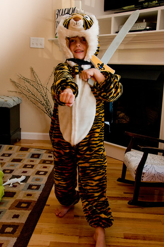 Tiger super ninja