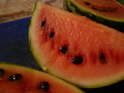 Mini Melon Closeup