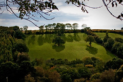 Field Of Shadows (me'nthedogs) Tags: autumn trees shadows devon eastdevon
