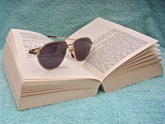A Good Book in the Sun (254365) by IreneB