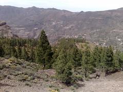 Gran Canaria - Roque Nublo & Surroundings