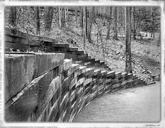 Reinforcement (valeehill) Tags: wall grayscale greyscale retainingwall