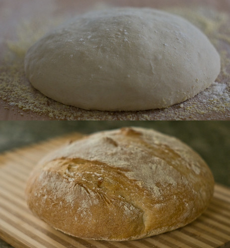 Bread (Before and After)