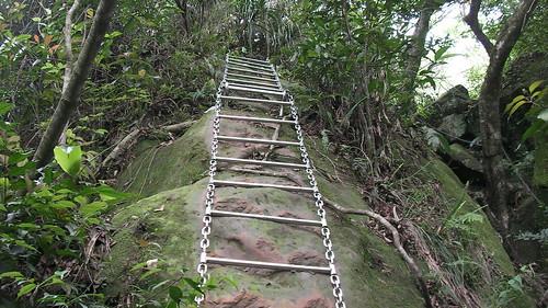 皇帝殿登山步道_10_又是往上爬_2011_05_07