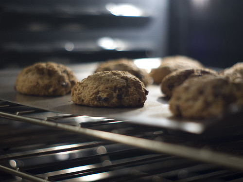 Oat Drop Biscuit in Oven