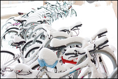 There will be Snow Biking today! (Pat Kilkenny) Tags: blue red snow cold ice bike canon january magenta bikes 2009 handlebars 50mmf14 muyfrio canon40d patkilkenny