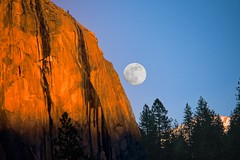 "Yosemite - ""El Capitan Moon""-(playing with Trees)""_.jpg (YOSEMITEDONN) Tags: california trees sunset moon beautiful nationalpark yosemite elcapitan blueribbonwinner naturescall dazzlingshots goldstaraward treeofhonor ourmasterpieces"