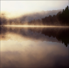 In Golden Pond (AndrewNZ) Tags: morning trees newzealand sunlight mist lake mountains reflection topf25 topv111 wow golden topf50 topv555 topv333 topf75 glare fuji topc50 topv999 topv444 topv222 hasselblad 500c topv777 topf100 southernalps topv666 lakematheson mountcook velvia50 mounttasman tewaipounamu interestingness53 interestingness41 i500 explore27jan09
