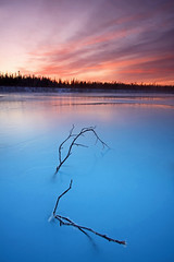 Sunset On The Wood (Wolfhorn) Tags: wood winter sunset snow cold ice nature alaska river flow over wilderness fricken