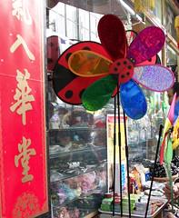 Ladybug in Bloom (Wavellite) Tags: flowers flores flower color catalina chinatown flor artificial chinesenewyear ladybug multicolor belgrano barriochino mariquita warmcolors aonuevochino vaquitadesanantonio coloresvivos