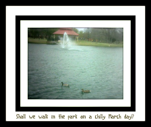 Shall we walk in the park?