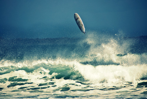 Surf's fly