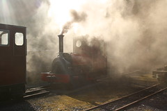 Elidir steaming up (fairlightworks) Tags: sunlight museum wales smoke cymru steam locomotive slate llanberis narrowgauge gwynedd northwales hunslet