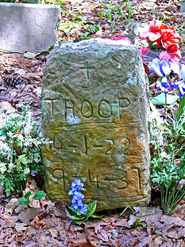 Troop ~ 1st Coon Dog Buried Here