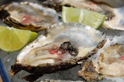 Oysters - Silvestre Ensenada