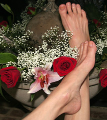 Bare Toes (dart5150) Tags: flowers roses feet fountain female toes arch lily bare babysbreath nopedicure