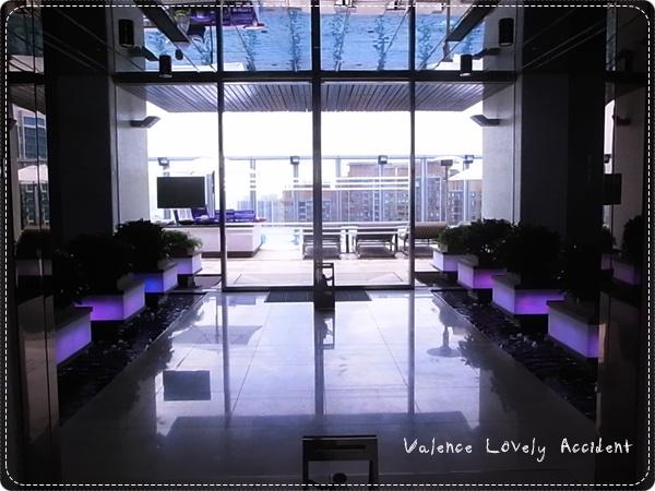 W Hotel_75F_游泳池