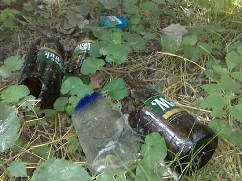 Vase de plastic şi de sticlă aruncate în pădure (unele sparte)