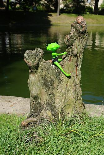 [Wonder Frog Wanda] Grenouille voit la vie en vert 3795931620_4d82cbbb88